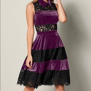 Venus Lace and Velvet dress